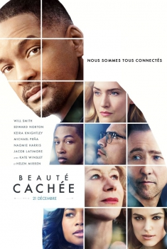 Collateral beauty (2016)